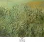 grassland 2005