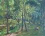 lake gardens 1985