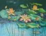 lotus 2000