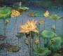 lotus  1999