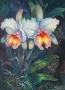 orchid pair 2002